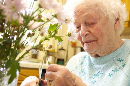 Elderly woman arranging flowers