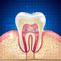 New York Endodontics