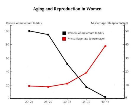 aging and reproduction in women