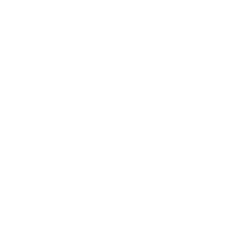 Speaking consulting network logo
