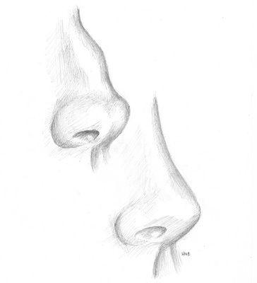 rhinoplasty paoli main line nose job nose surgery