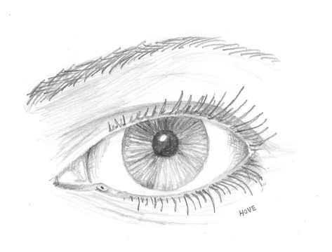 Pencil drawing close up of a woman's eye