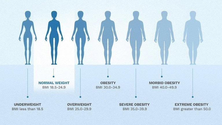Finest Metabolismo Android  Apps iPhone