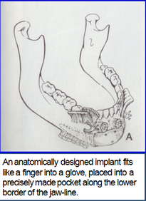 Illustration of anatomy of lower jaw