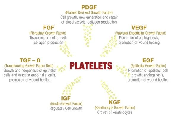 platelet growth factors