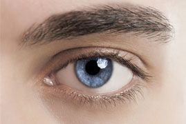 Close up of a Caucasian man's blue eye with thick eyebrow