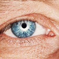 Close up of an elderly person's very bright blue eye