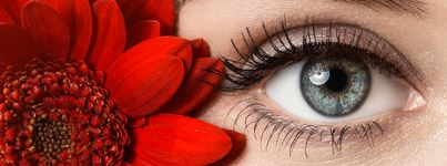 Woman's beautiful blue eye framed by bright red flower
