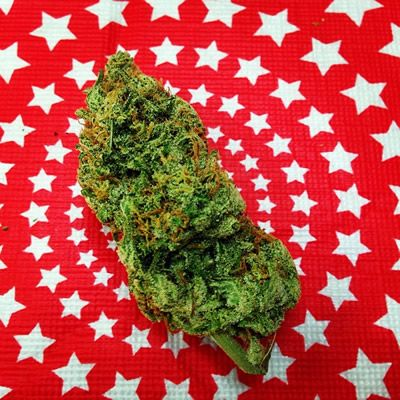 A giant nugget of marijuana lying on a red-and-white star pattern.