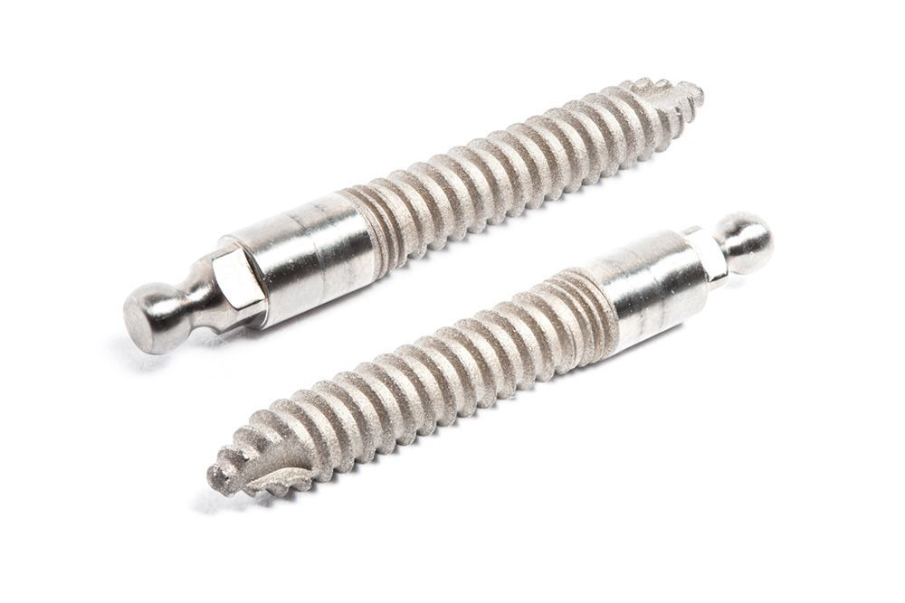 Two mini dental implants
