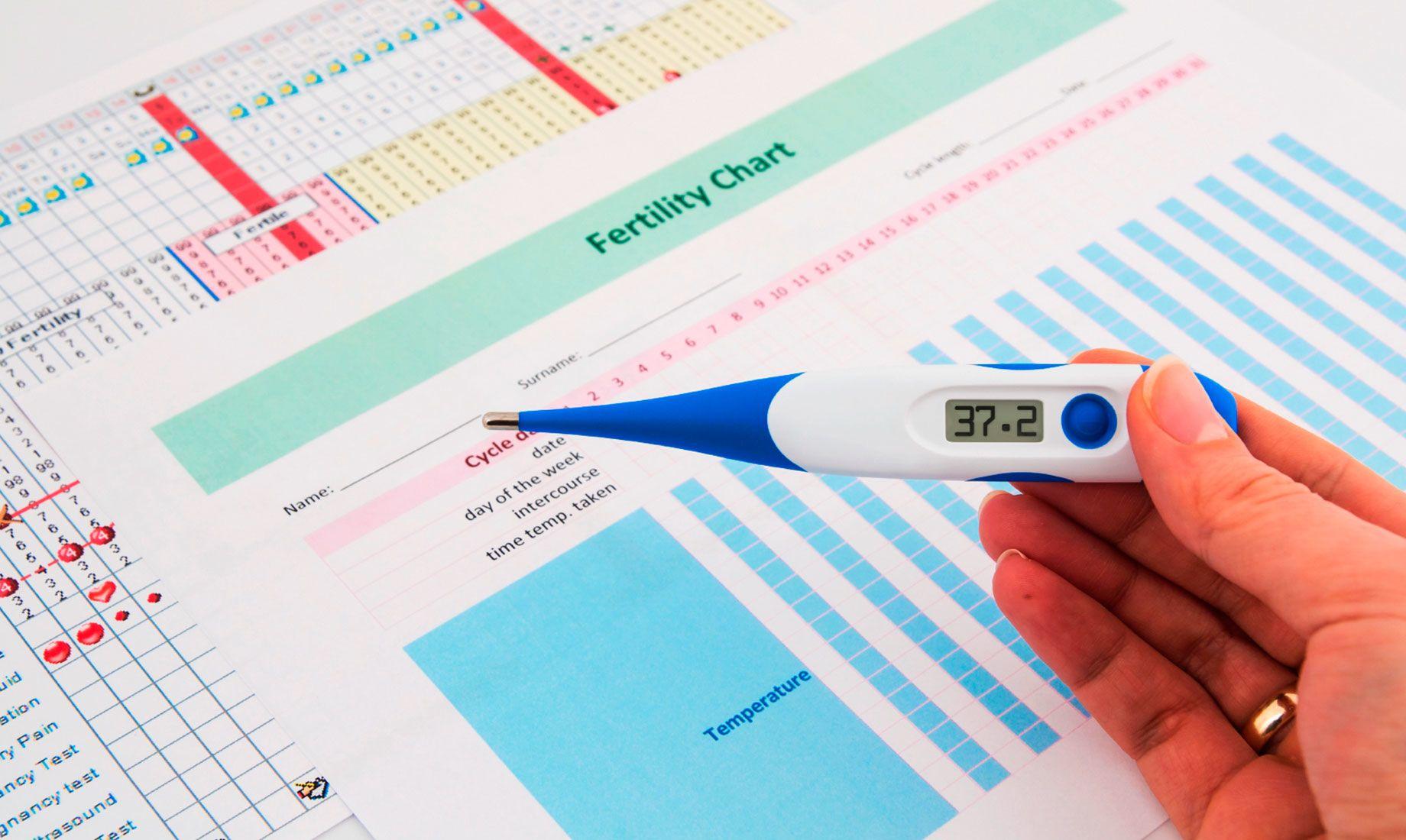 图表上说明了IVF周期中的步骤