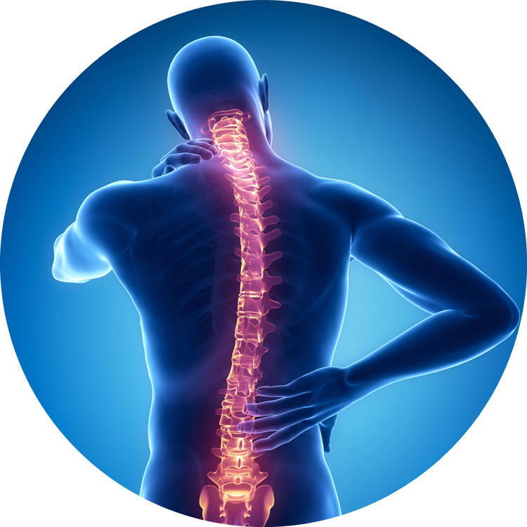Spine Surgery - Austin, TX - Orthopaedic Specialists of Austin