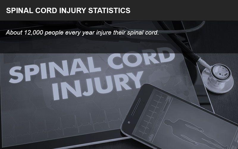 Spinal cord injury statistics
