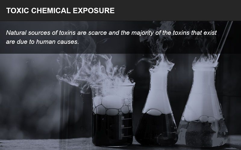 Toxic chemical exposure infographic