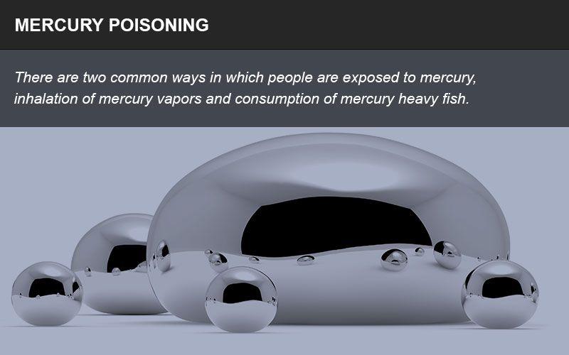 Mercury poisoning litigation infographic