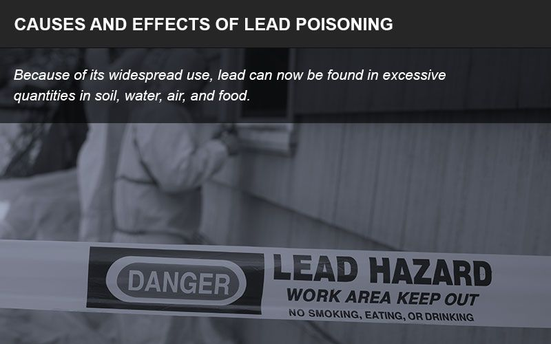 Lead poisoning lawsuits infographic