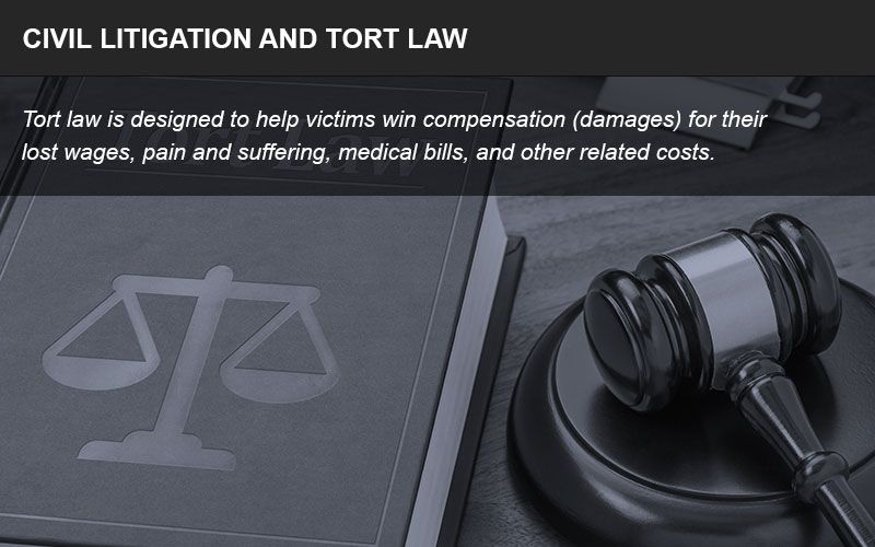 Civil litigation and tort law infographic