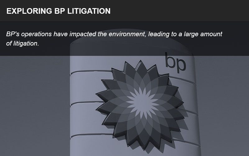 BP oil spill litigation infographic