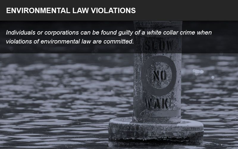 Individuals or corporations can be found guilty of a white collar crime if they violated environmental law