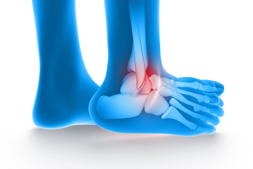 Image of a leg with the ankle area highlighted in red