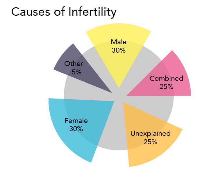Graphic showing causes of infertility