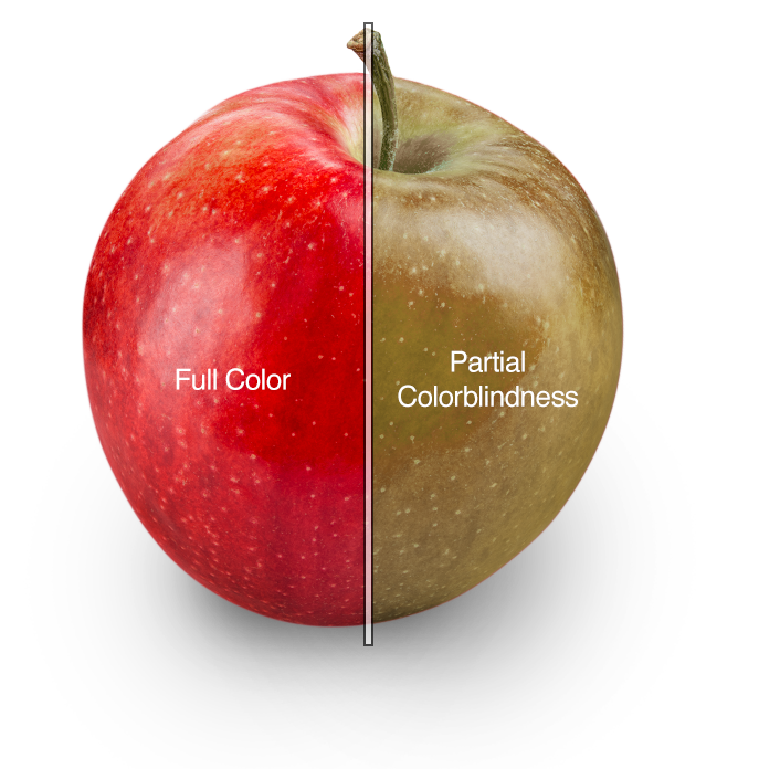 comparison between traditionally colored apple and distorted apple