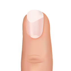 nail with white section